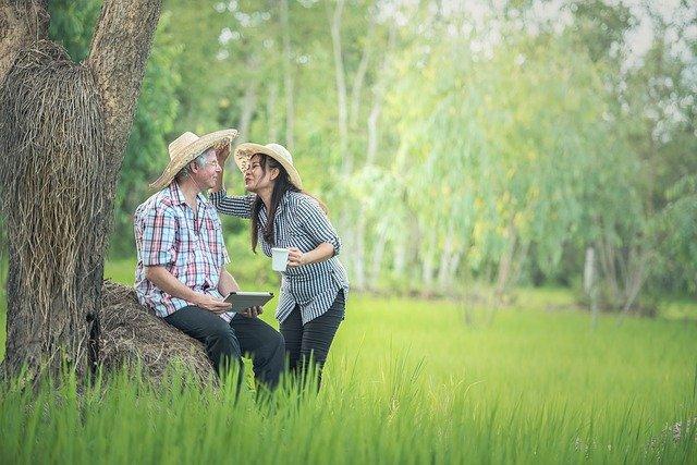 2 Menschen am Baum - Life Plus Erfahrung : Mit der 21 Tage Stoffwechselkur Life Plus abnehmen